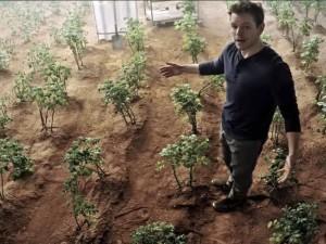 تولید سیبزمینی در کره مریخ با تکیه بر توان داخلی!