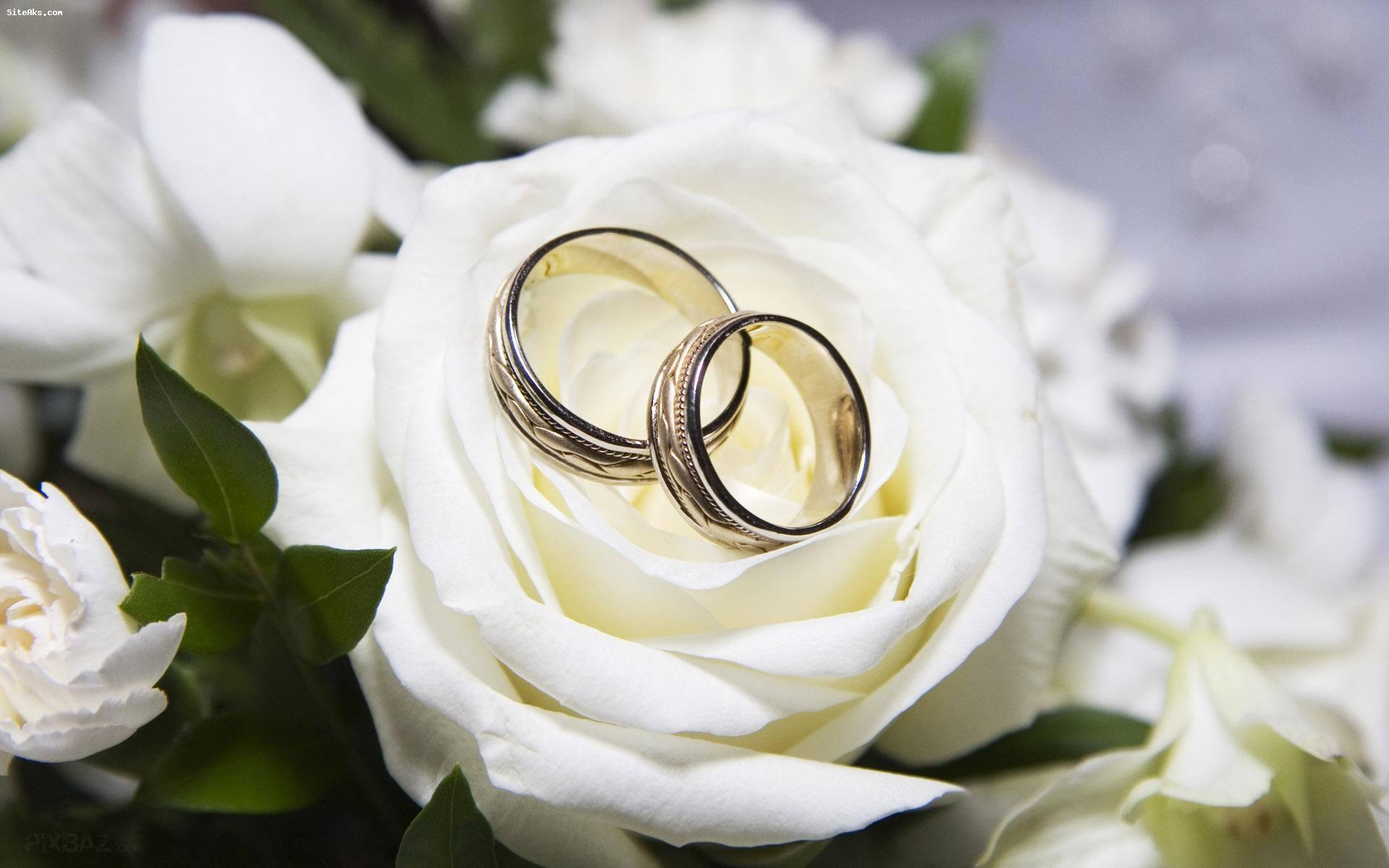 فرمول ازدواج موفق:خوب بودن،جور بودن،علاقه مندی خاص،مهارت های زندگی زناشویی