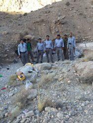 جلوگیری از بهره برداری غیر مجاز شیره انغوزه در ده شریف نوق