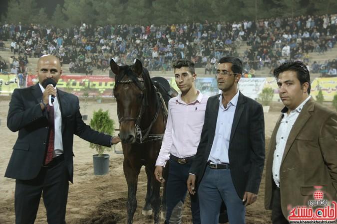 جشنواره زیبایی اسب در رفسنجان