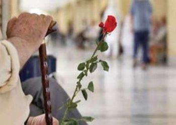 بنیان جامعه بر دوش سالمندان و تجاربشان استوار است