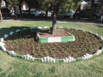کاشت گل های پاییزه در سطح شهر رفسنجان آغاز شد + عکس