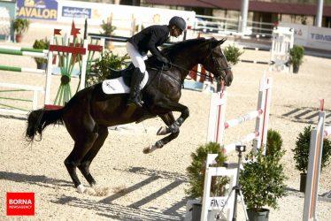 اولین مسابقات پرش با اسب به میزبانی دانشگاه علامه جعفری در رفسنجان برگزار می شود