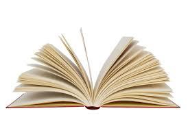 یک کاسه گل سرخ در بیست و چهارمین نشست یک مولف،یک کتاب