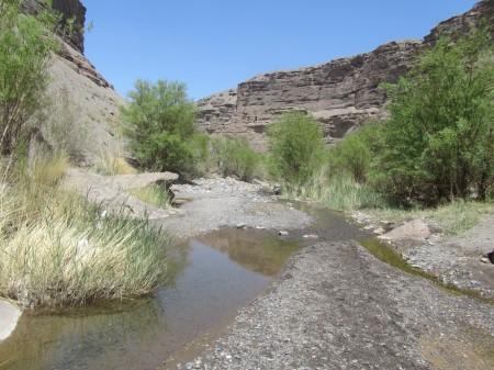 رودخانه سفید رفسنجان نیز براه افتاد/ ادامه آماده باش کامل نیروهای امداد و نجات