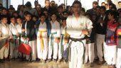 برپایی نمایشگاه مفاخر کاراته در رفسنجان / تصاویر