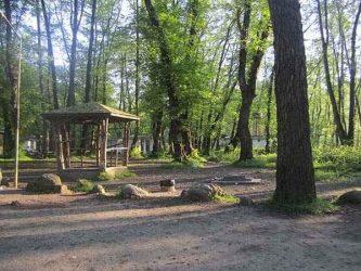 افتتاح پارک جنگلی ۳۰۰ هکتاری در رفسنجان/تصاویر