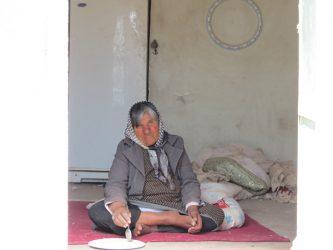 آی آدمها این جا مادری دارد می سپارد جان / ننه صغری در رفسنجان ، شهر پرآوازگان ، تنها مانده است