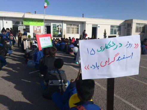 آیین گرامیداشت روز درختکاری در رفسنجان برگزار شد / تصاویر