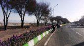 آغاز گل کاری و رنگ آمیزی مبلمان پارکها در رفسنجان