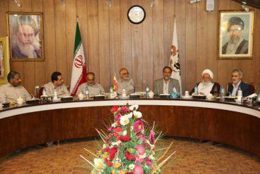 نشست صمیمی اعضای شورای شهر رفسنجان با مدیران مس منطقه کرمان / گزارش تصویری