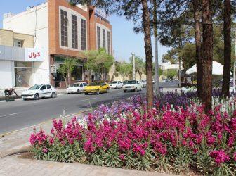 کاشت بیش از ۳ میلیون نشاء انواع گل در شهر رفسنجان