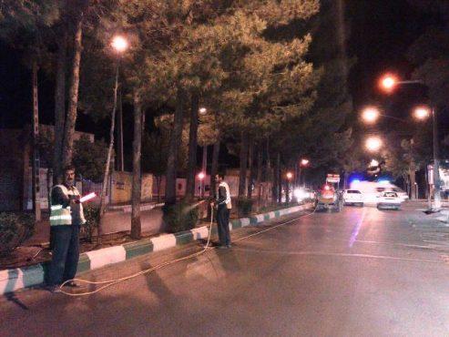 عملیات آبشویی درختان فضای سبز شهری در تابستان اجرا می شود