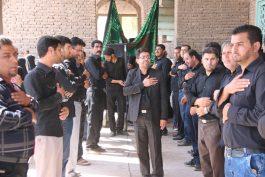 مراسم عزاداری روز عاشورا در امامزاده رضا (ع) رفسنجان برگزار شد/تصاویر