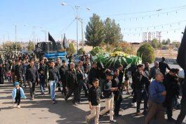 پیاده روی عاشقان امام حسن مجتبی(ع) در رفسنجان /تصاویر