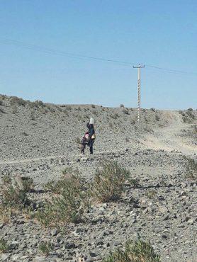 «گاوچاران» تشنه است/ طی مسافت ۳ کیلومتری برای یک گالن ۲۰ لیتری آب