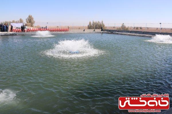 افتتاح فاز اول مزرعه ماهی گرمابی با ظرفیت10تن(20هزار قطعه) و حجم استخر3000هزار متر مکعب با هزینه 1500میلیون ریال