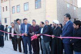 بوستان محله ای پونه برای اهالی خیابان مدرس رفسنجان راه اندازی شد / تصاویر