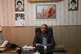 16 بوستان جدید در رفسنجان احداث می شود