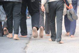 پیاده روی اربعین حسینی با حضور کاروان رهپویان کربلا در رفسنجان برگزار شد + تصاویر