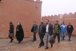 دومین تور رسانه ای کارآفرینی در رفسنجان برگزار شد/ تصاویر