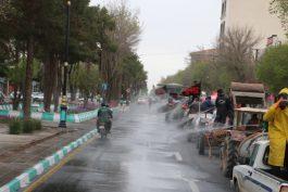 همایشی علیه کرونا در شهر رفسنجان /تصاویر