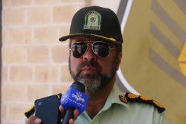 سارقان تحت پوشش ماموران بهداشت در رفسنجان دستگیر شدند