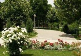 اضافه شدن ۳ حلقه چاه آب غیر شرب به انشعاب آبیاری فضای سبز شهر