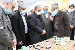 راهاندازی نخستین مرکز نوآوری و شتابدهی صنعت مس کشور در رفسنجان
