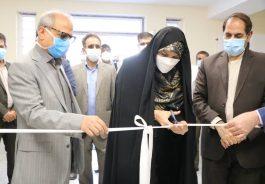 افتتاح چندین طرح عمرانی در شهرستان های انار و رفسنجان + عکس